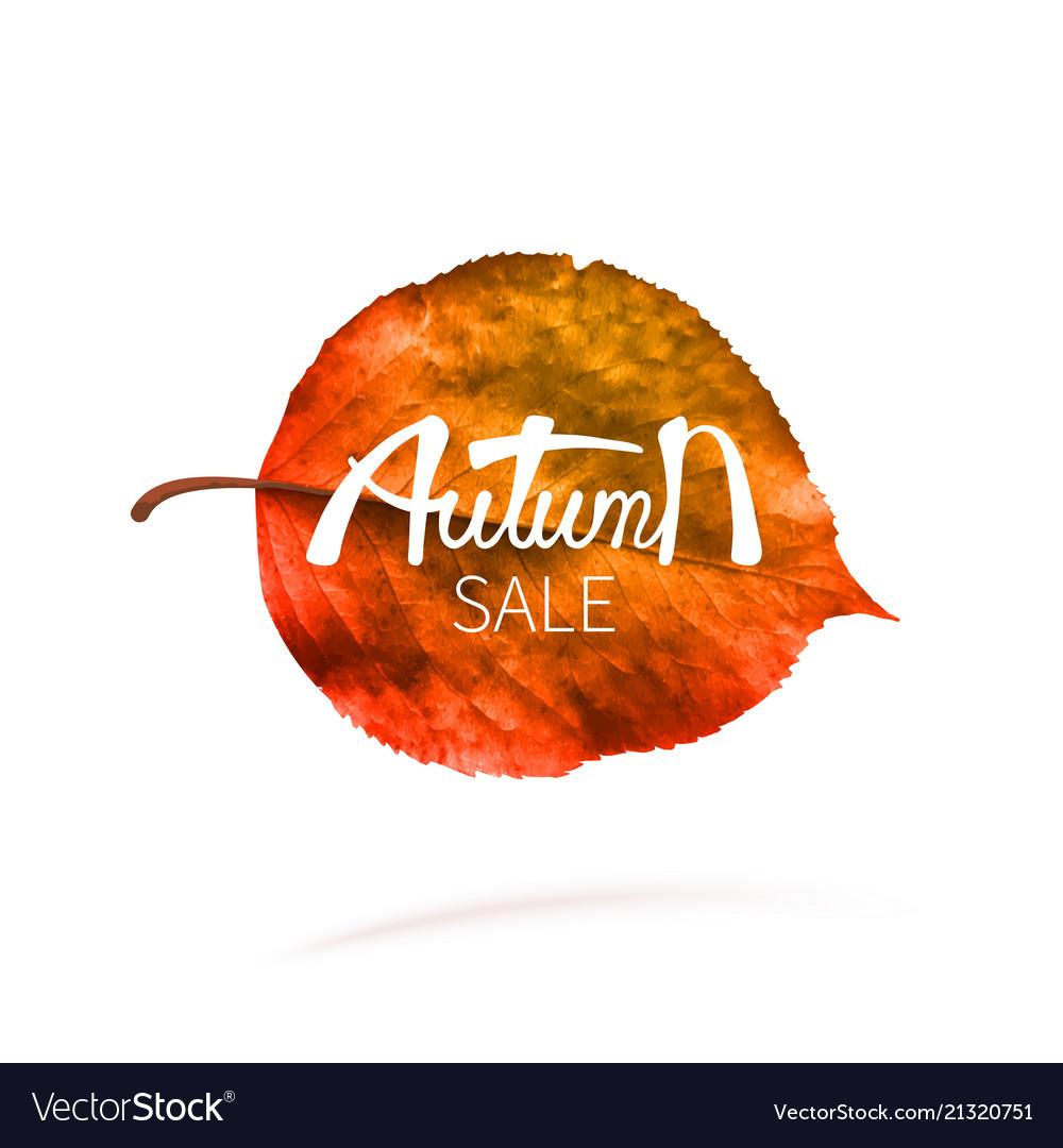 Stock sale autumn falling