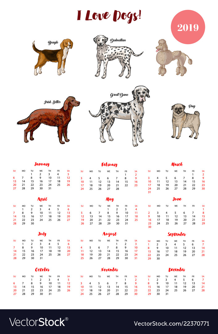 Dog Calendar 2019 Dogs Of Different Breeds Vector Image