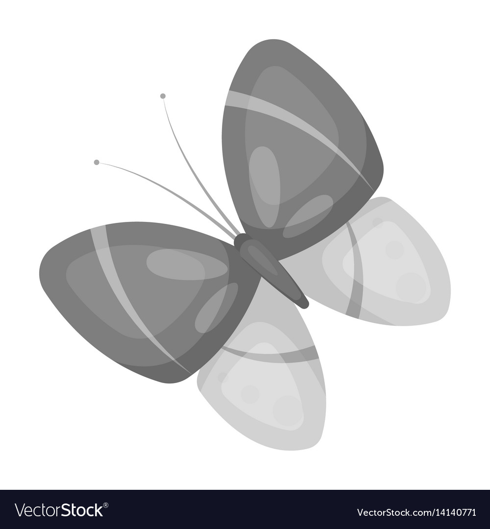 Spring butterfly easter single icon in monochrome