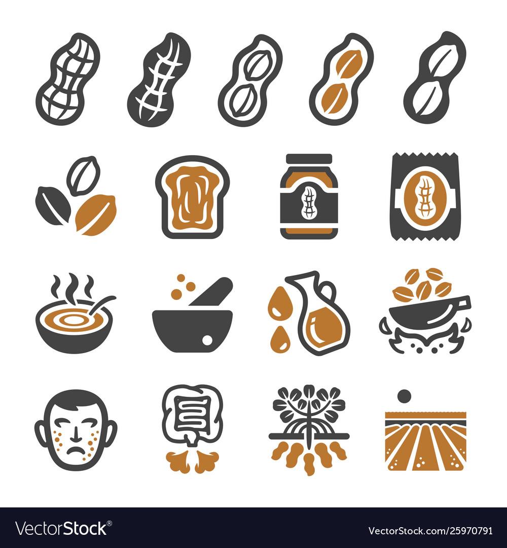 Peanut icon set