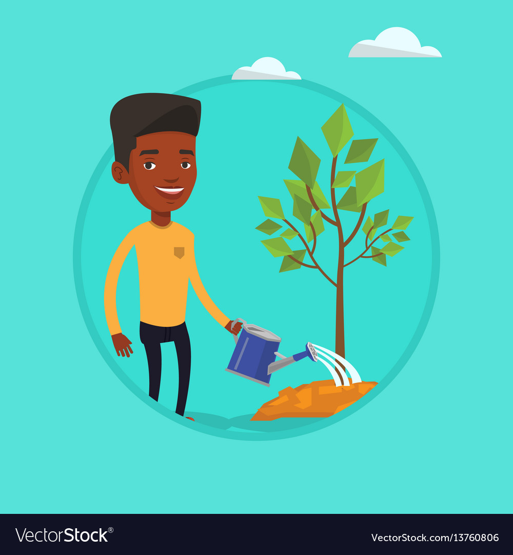 Man watering tree vector image