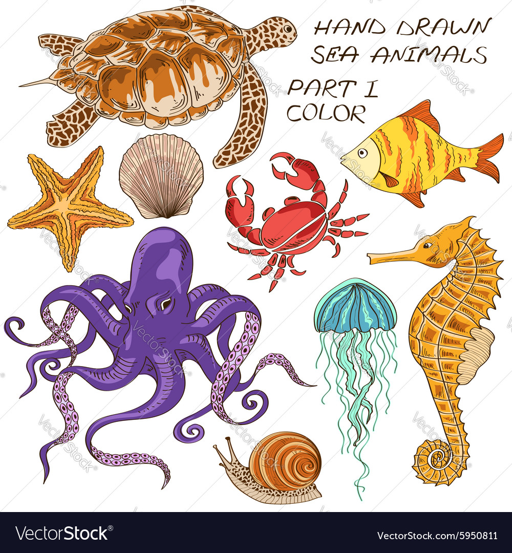 Set of isolated sea animals vector image