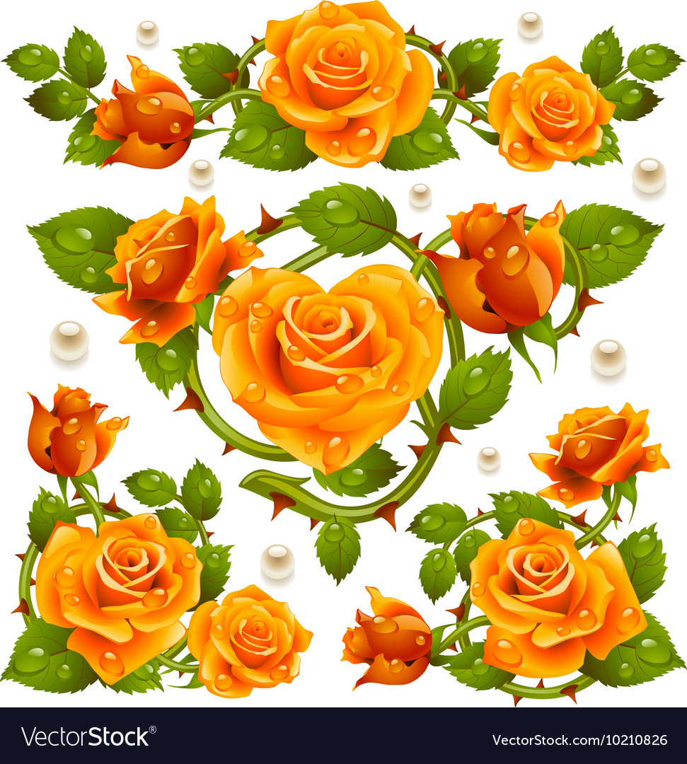 Yellow Rose design elements