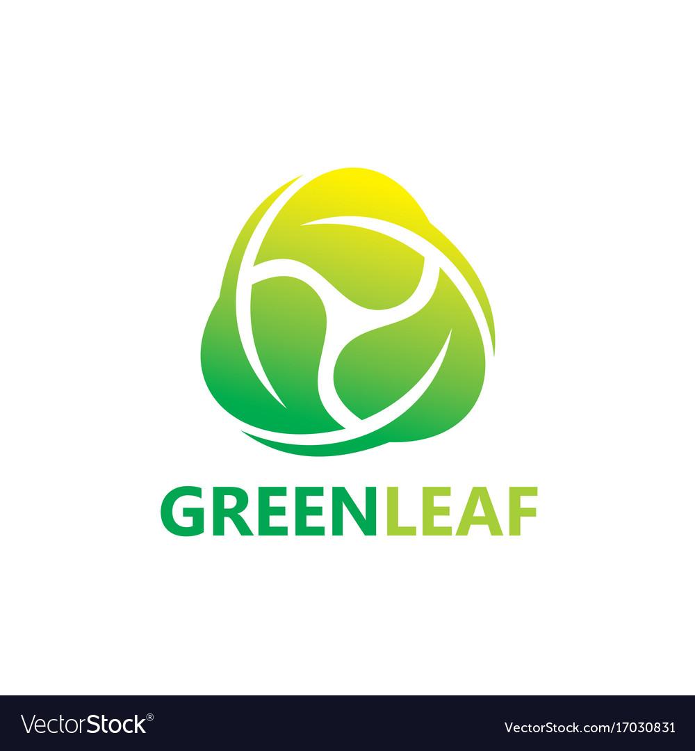 Circle green leaf botany logo vector image