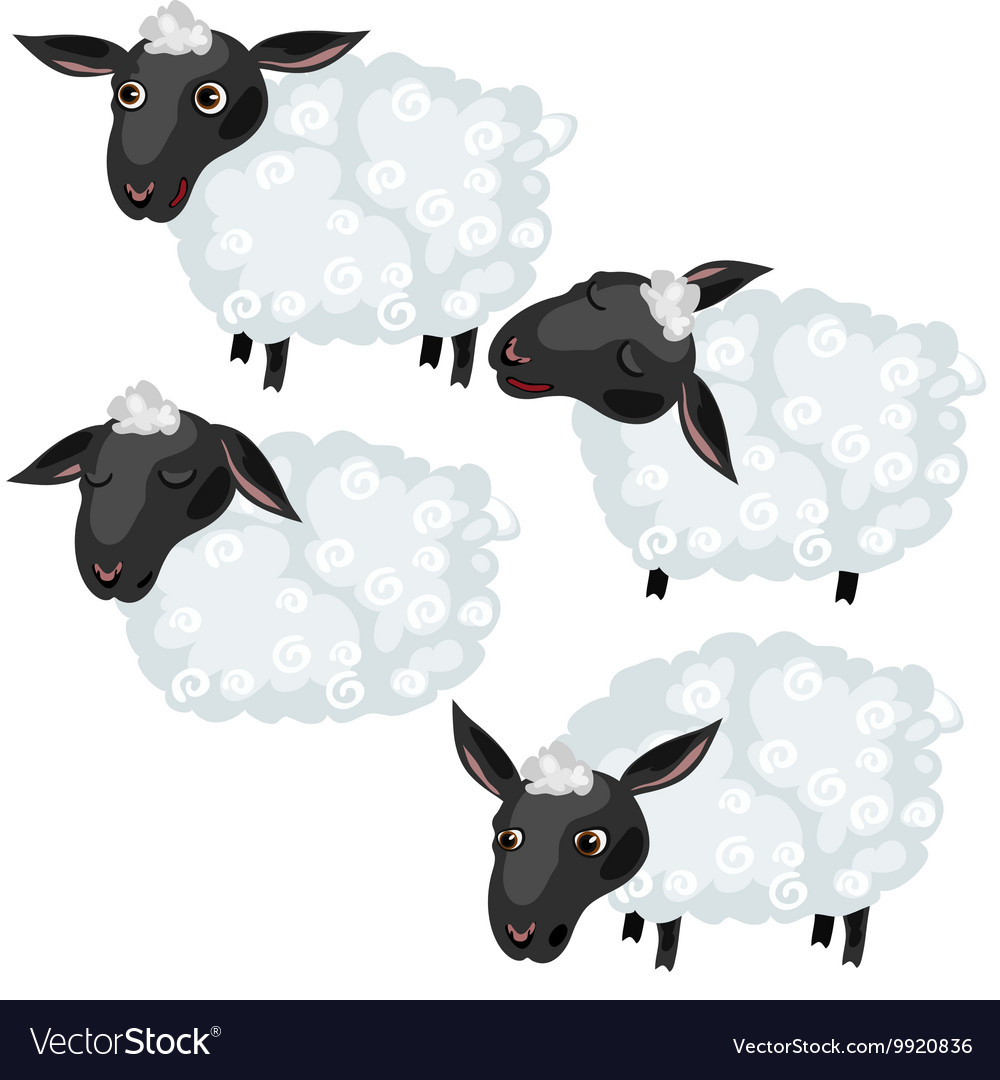 Cartoon sheep in four poses animal