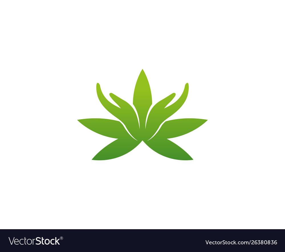 Creative logo cannabis hands design symbol