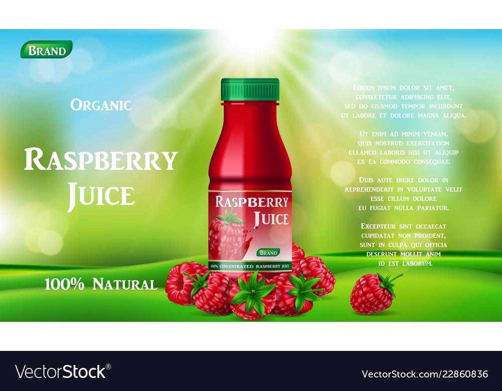 Raspberry juice bottle on green grass fruit juice