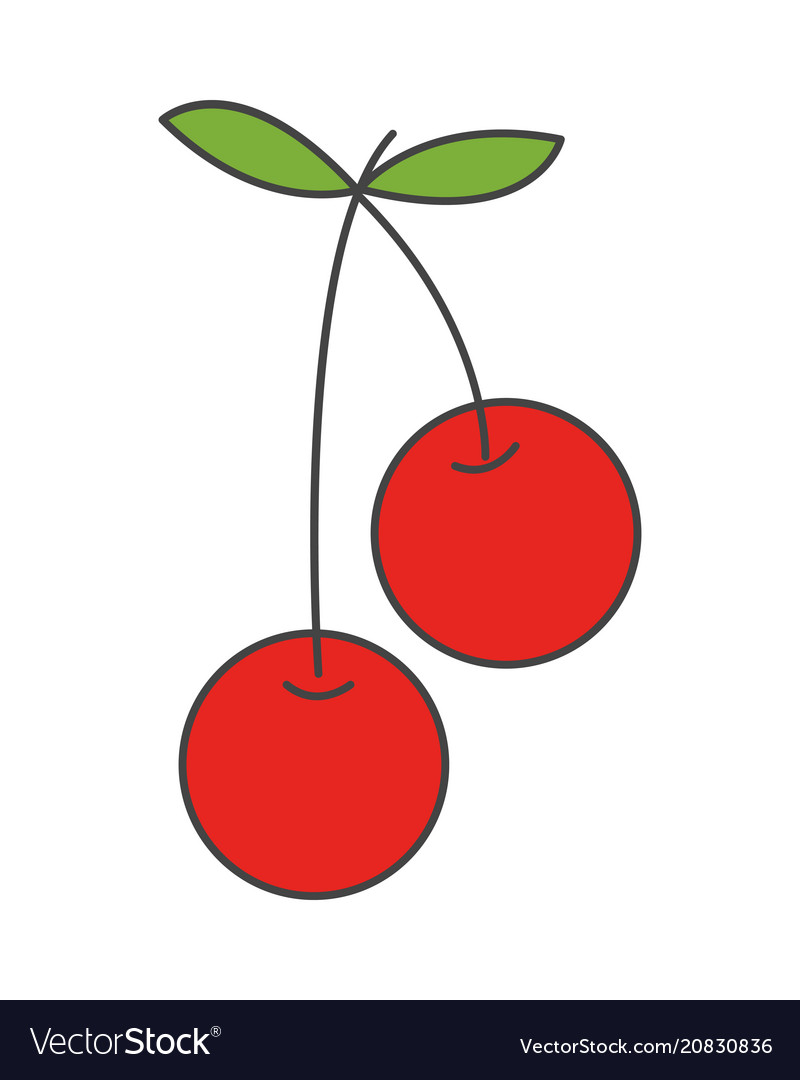 Two cherries on steam with leaf flat icon