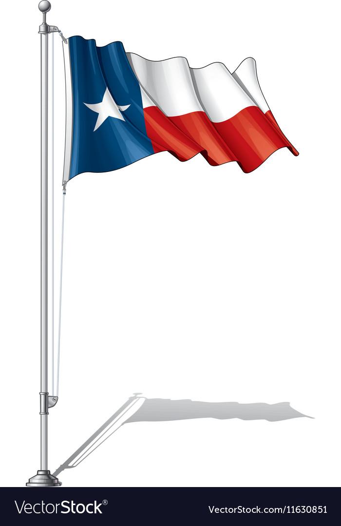 Flag Pole Texas vector image