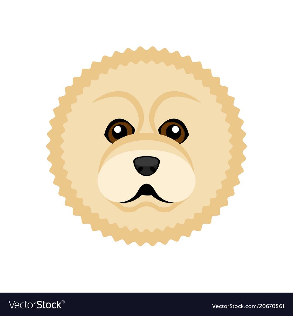 Cute chow chow dog avatar