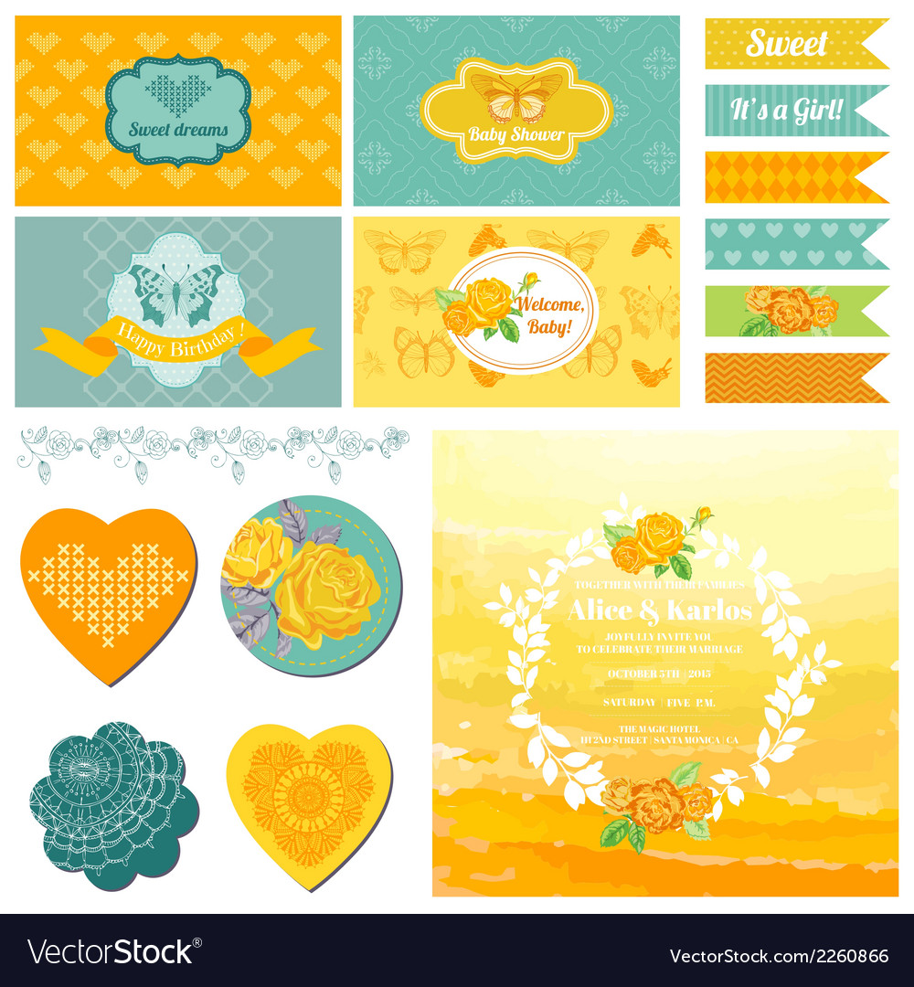 Baby Shower or Party Set - Vintage Butterfly Theme vector image