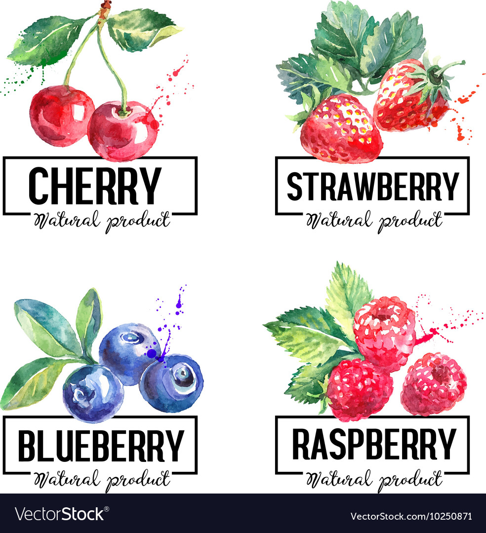Eco food labels set Watercolor hand drawn sketch vector image