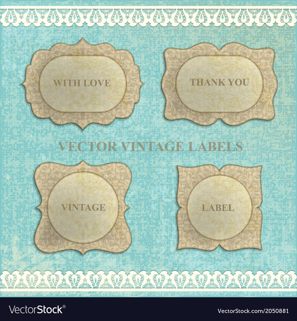 Set vintage labels with flowers vector image