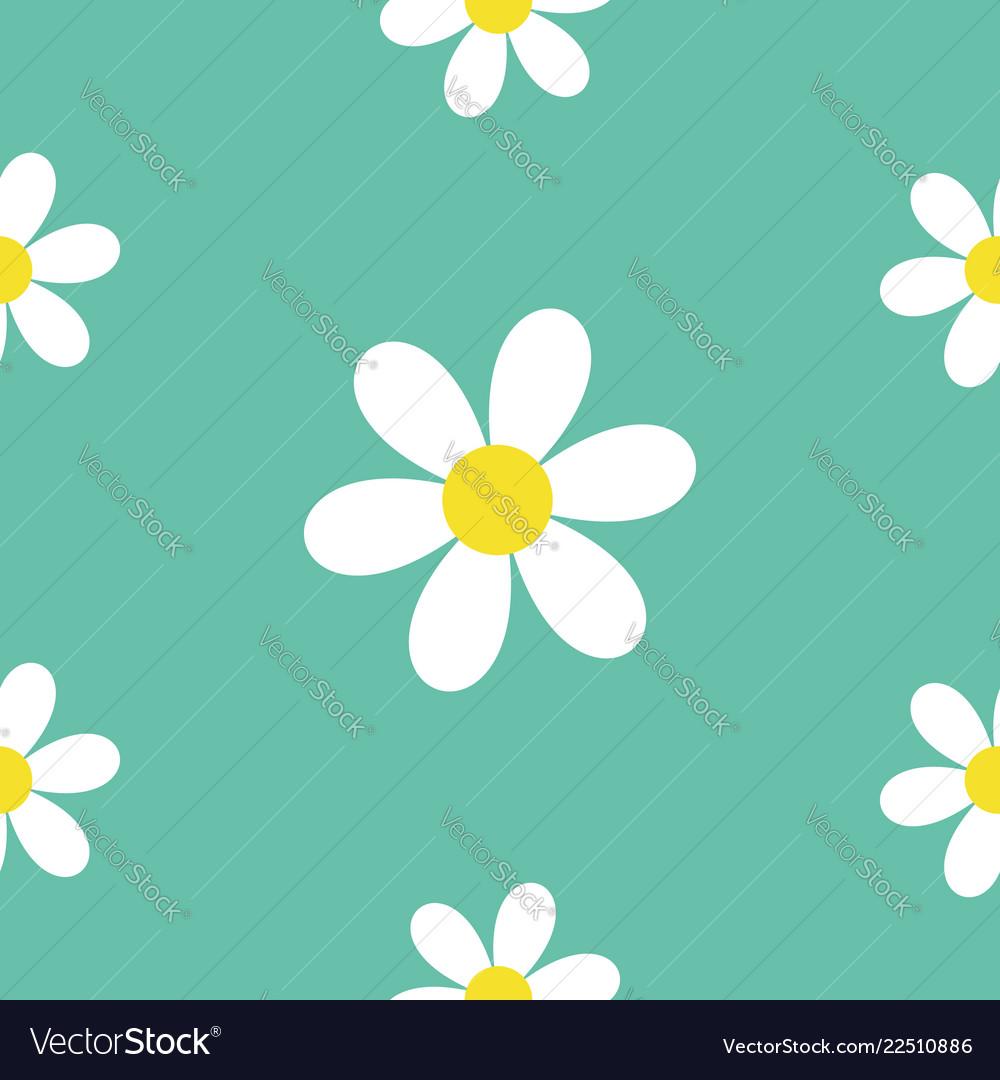 Seamless pattern daisy white chamomile icon cute