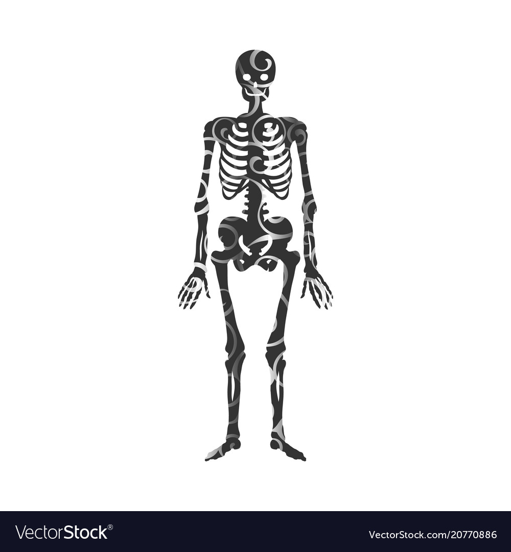 Skeleton Pattern Silhouette Ancient Monster Vector Image