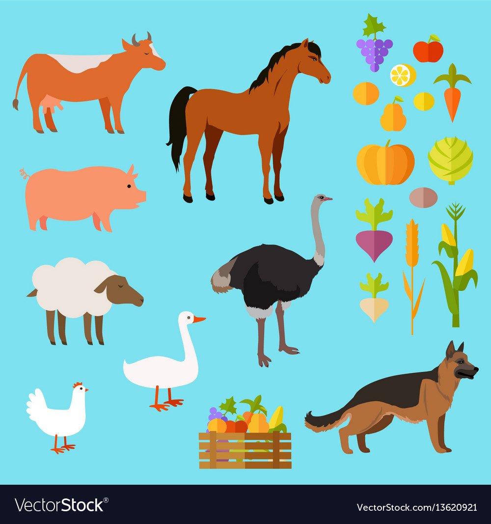 Domestic animals set near fruit and vegetable