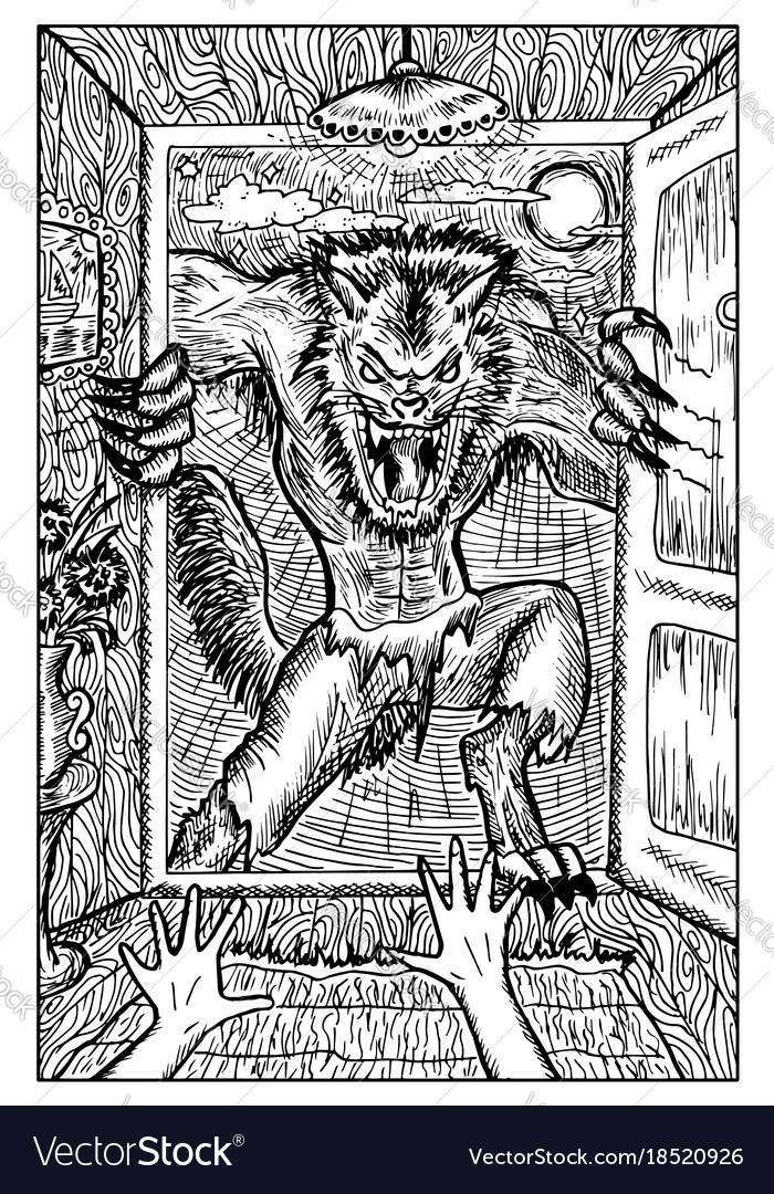 Werewolf engraved fantasy vector image