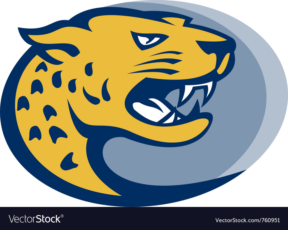 Leopard panther big cat head vector image