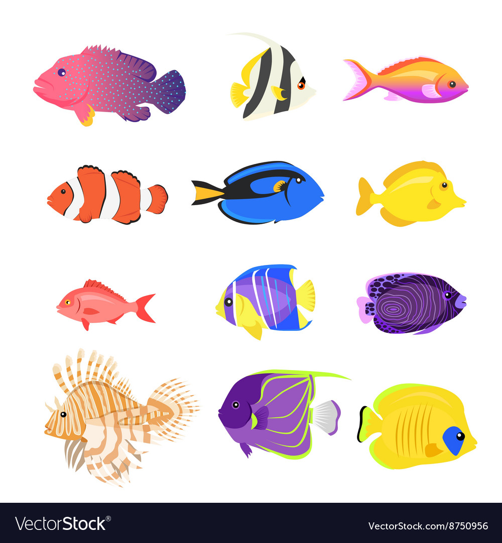 Collection Fish Images To Color Pictures Sabadaphnecottage