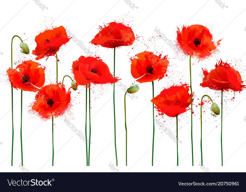Abstract beautiful background with red poppies