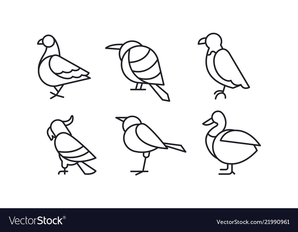 Set of birds in linear style pigeon