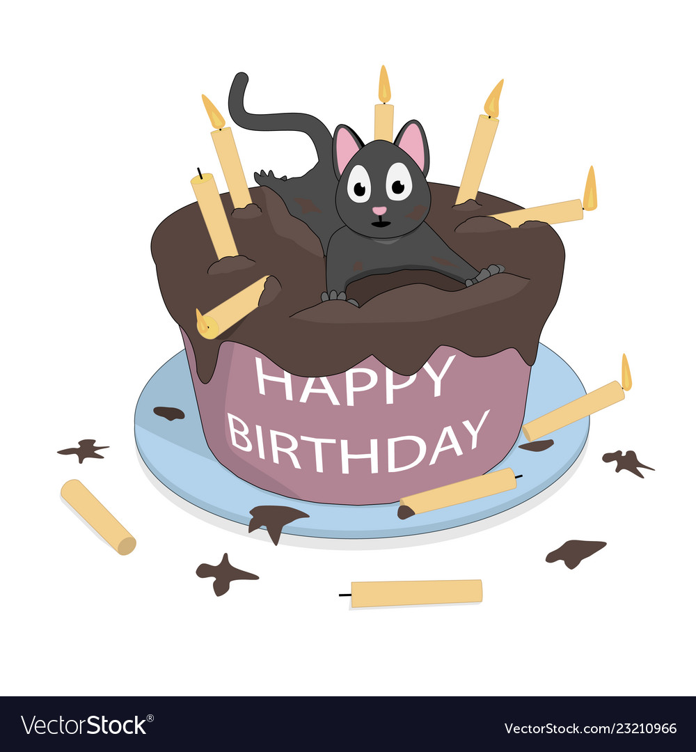 A cat on the cake wishes a happy birthday