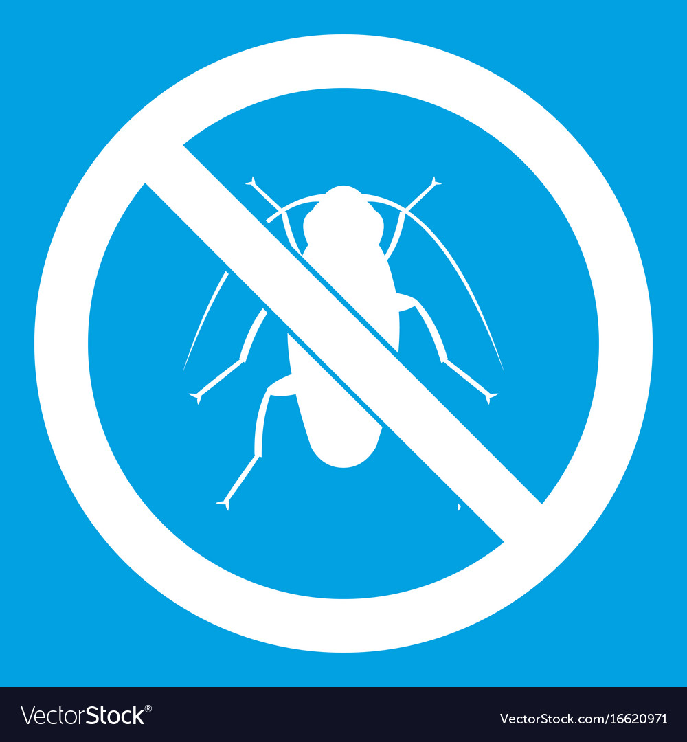 No cockroach sign icon white vector image