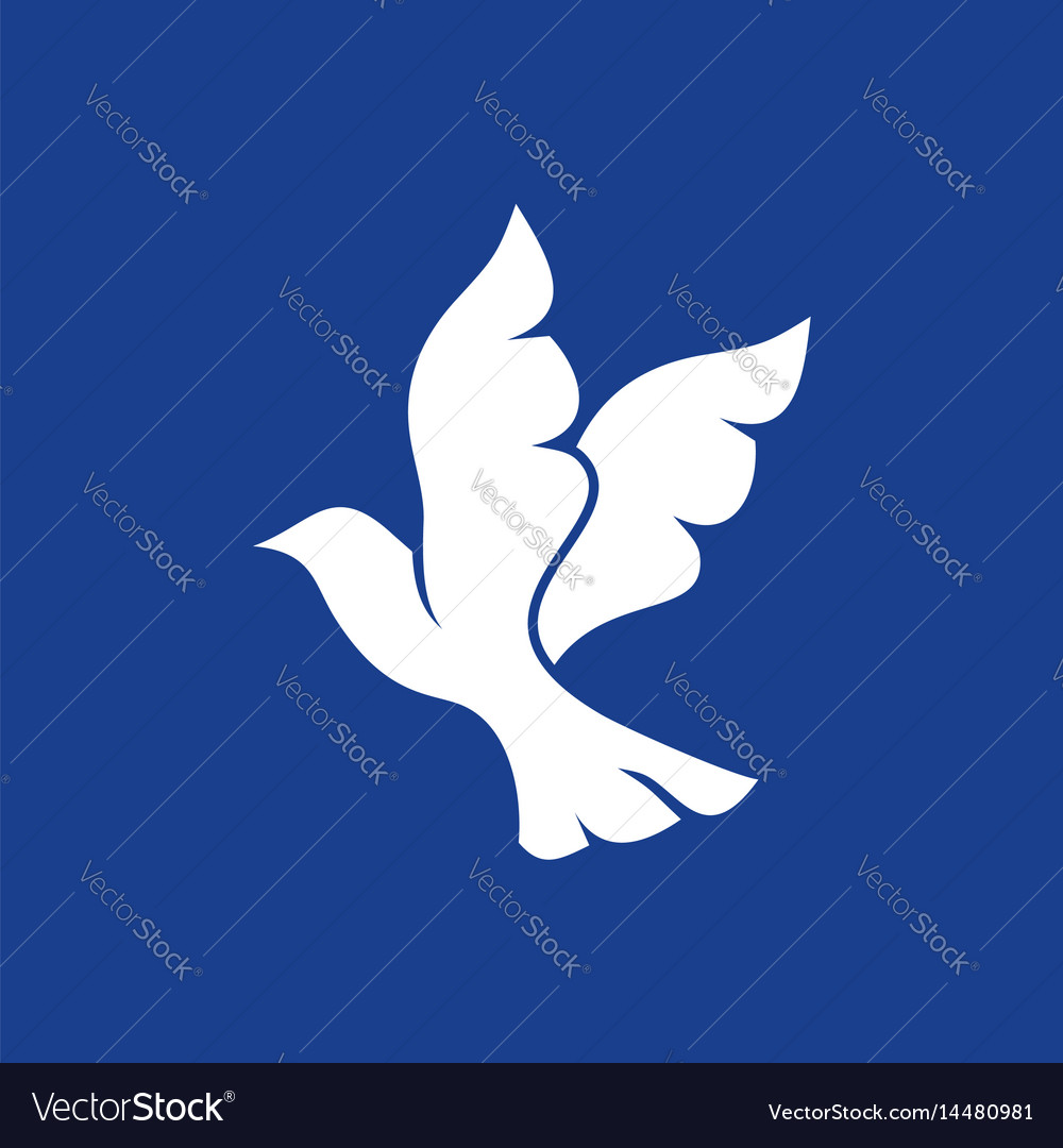 Dove - a symbol of the holy spirit vector image
