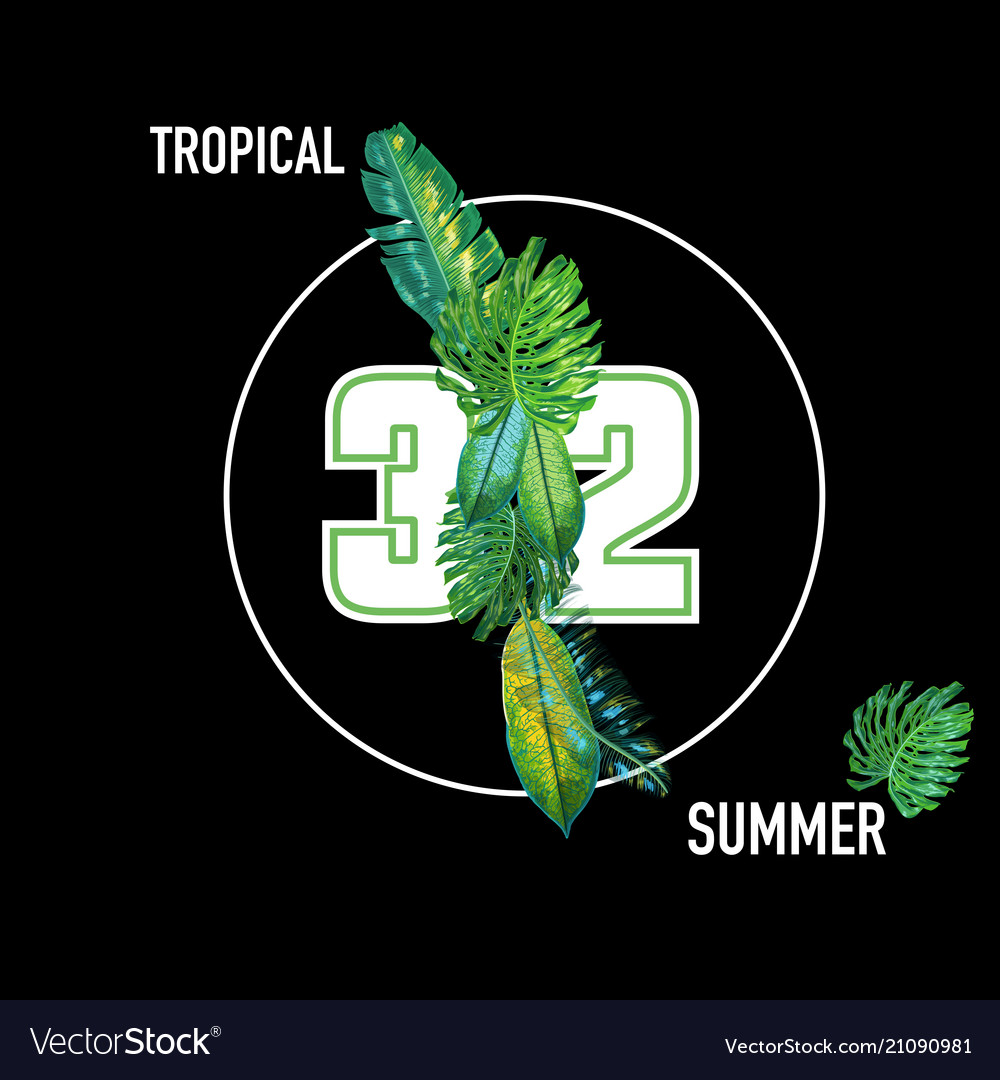 Hello summer tropical design with palm leaves