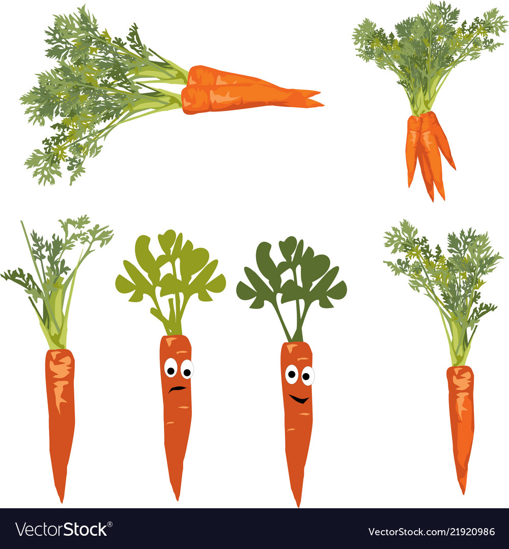 Carrot with a face objects on white background