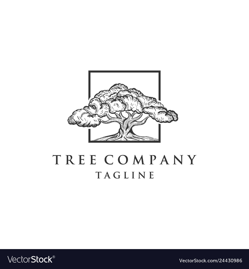 Oak tree concept logo template