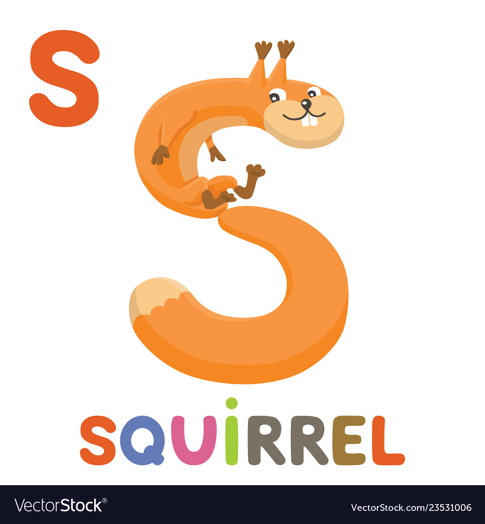 S is for squirrel letter s squirrel cute animal
