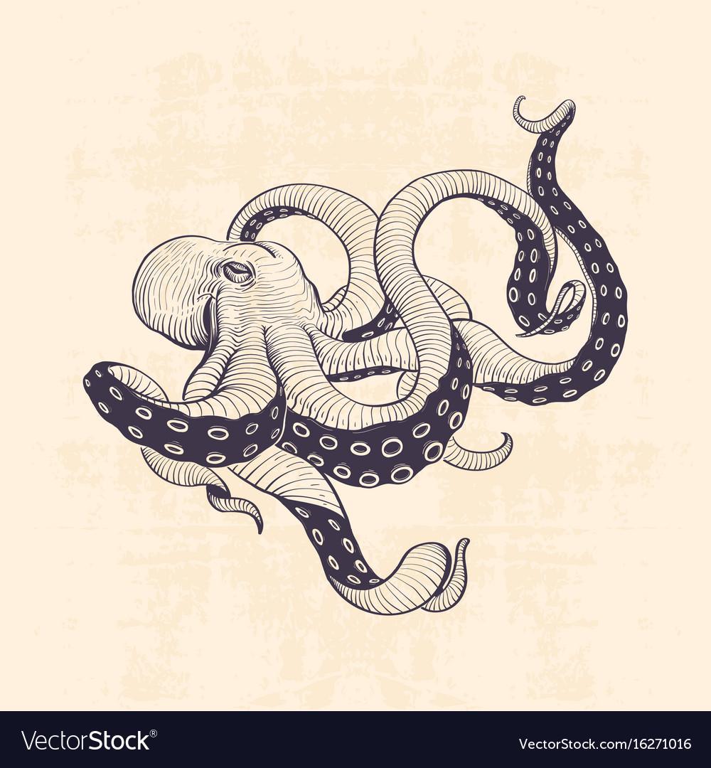 Octopus vintage