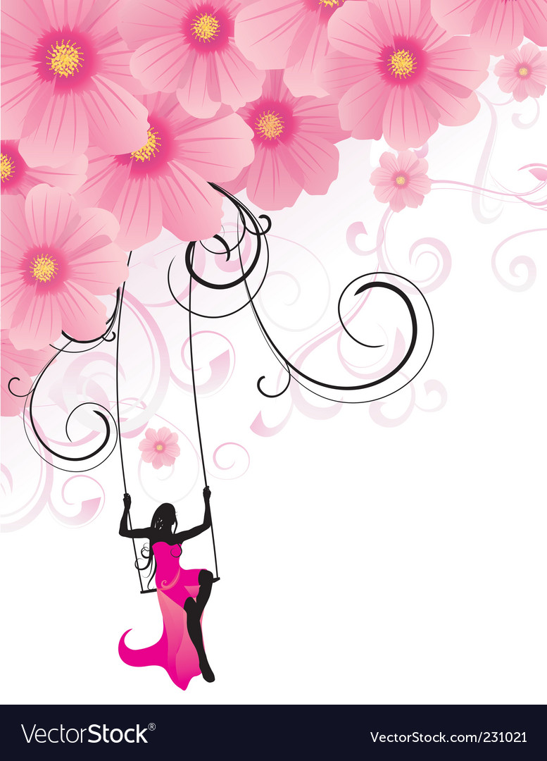 Flowers cosmos swing vector image