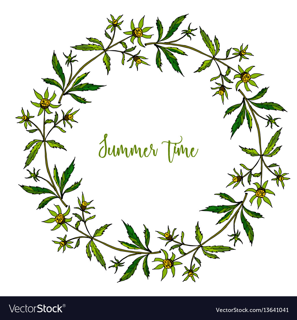 Hand drawn summer wreath