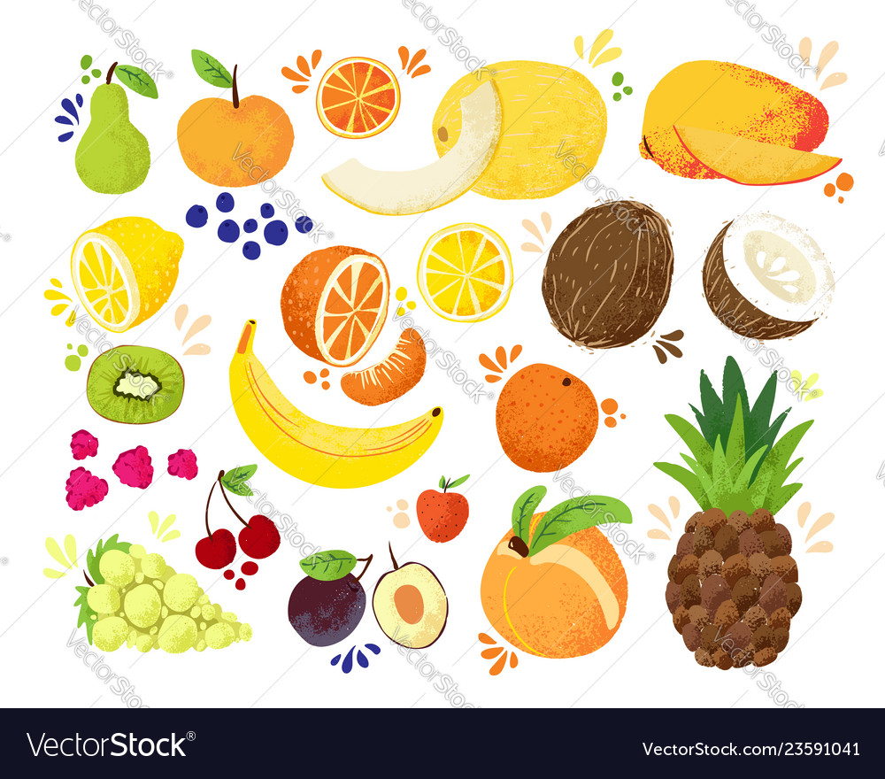 Set Of Colorful Hand Draw Fruits Tropical Sweet Vector Image