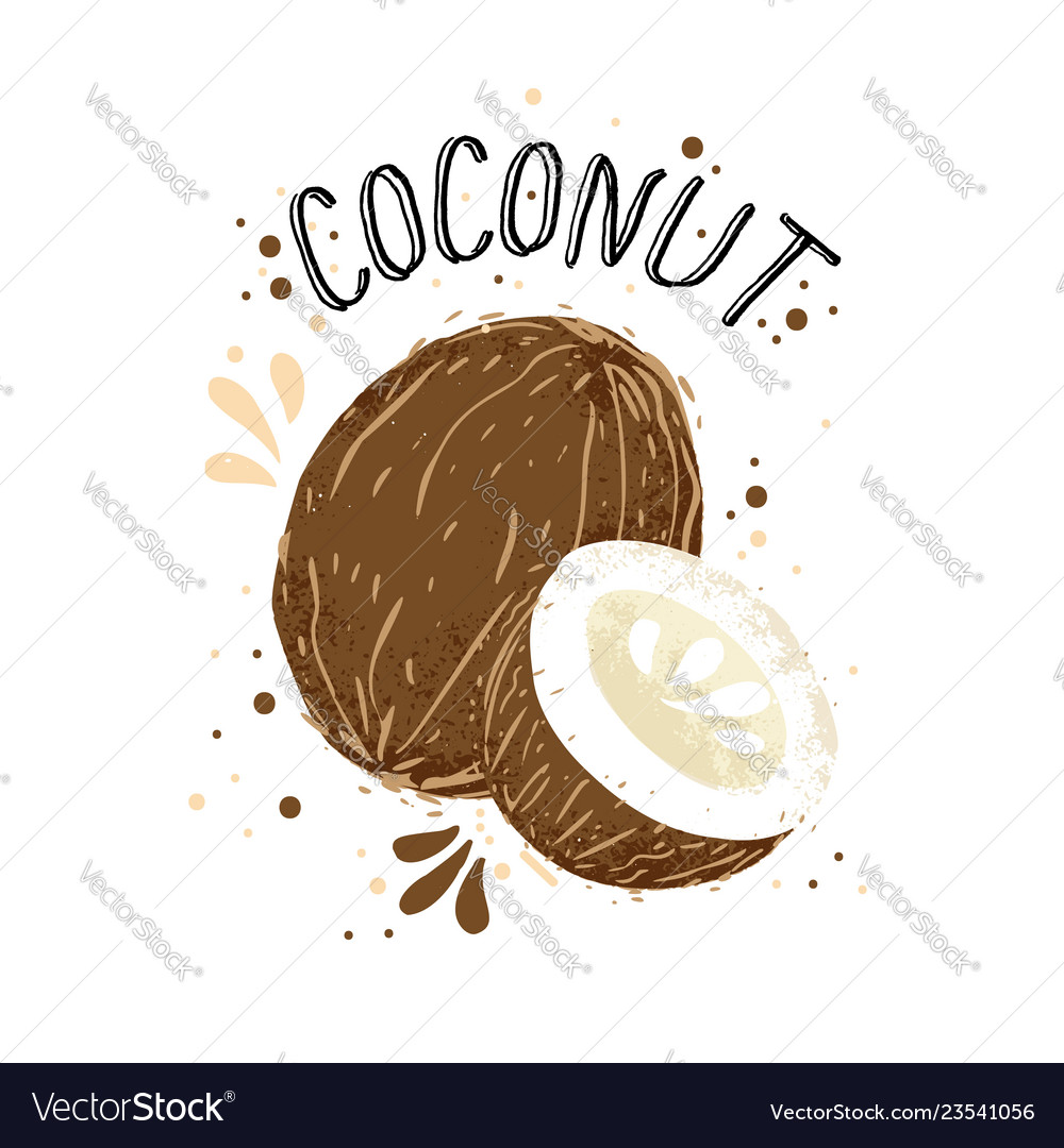 Hand draw coconut brown