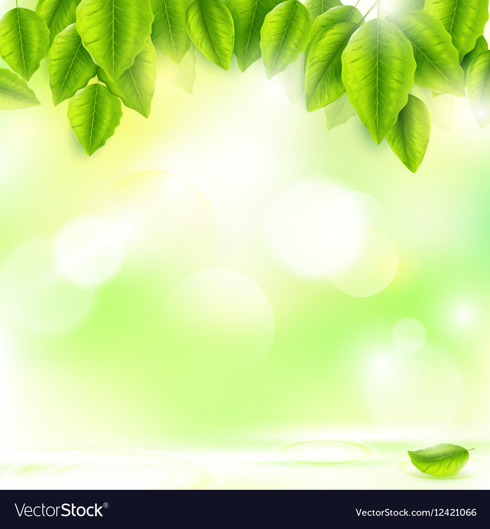 Green Leaves With Abstract Natural Background