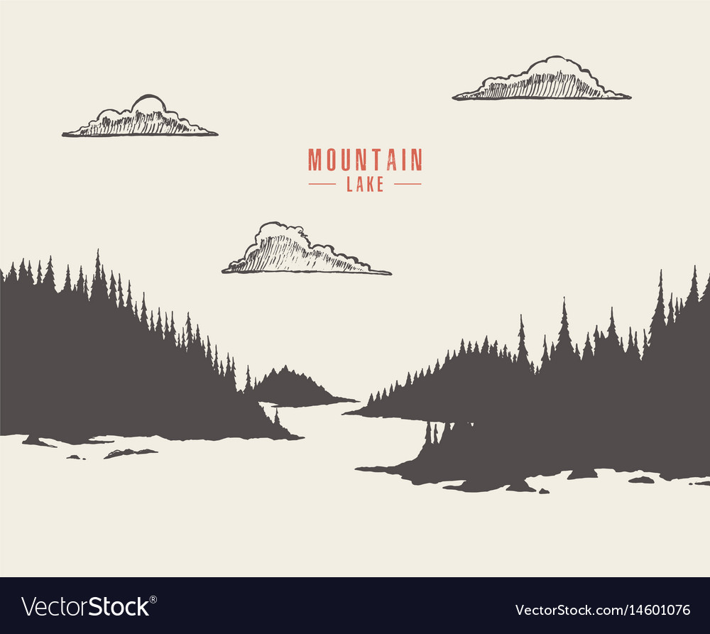 Mountain lake pine forest draw vector image