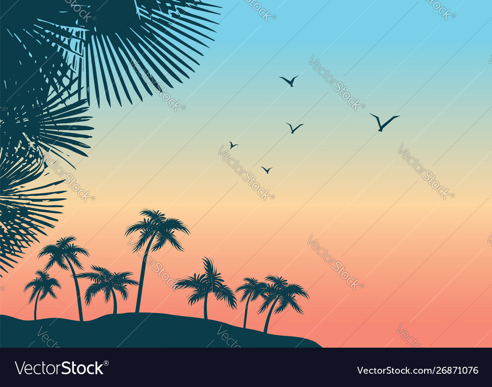Summer tropical palm trees landscape nature