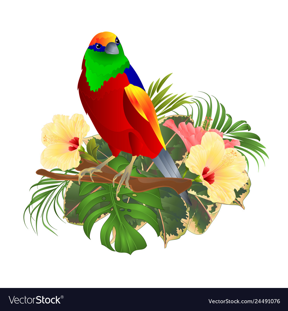 Tropical bird on a branch with tropical flowers