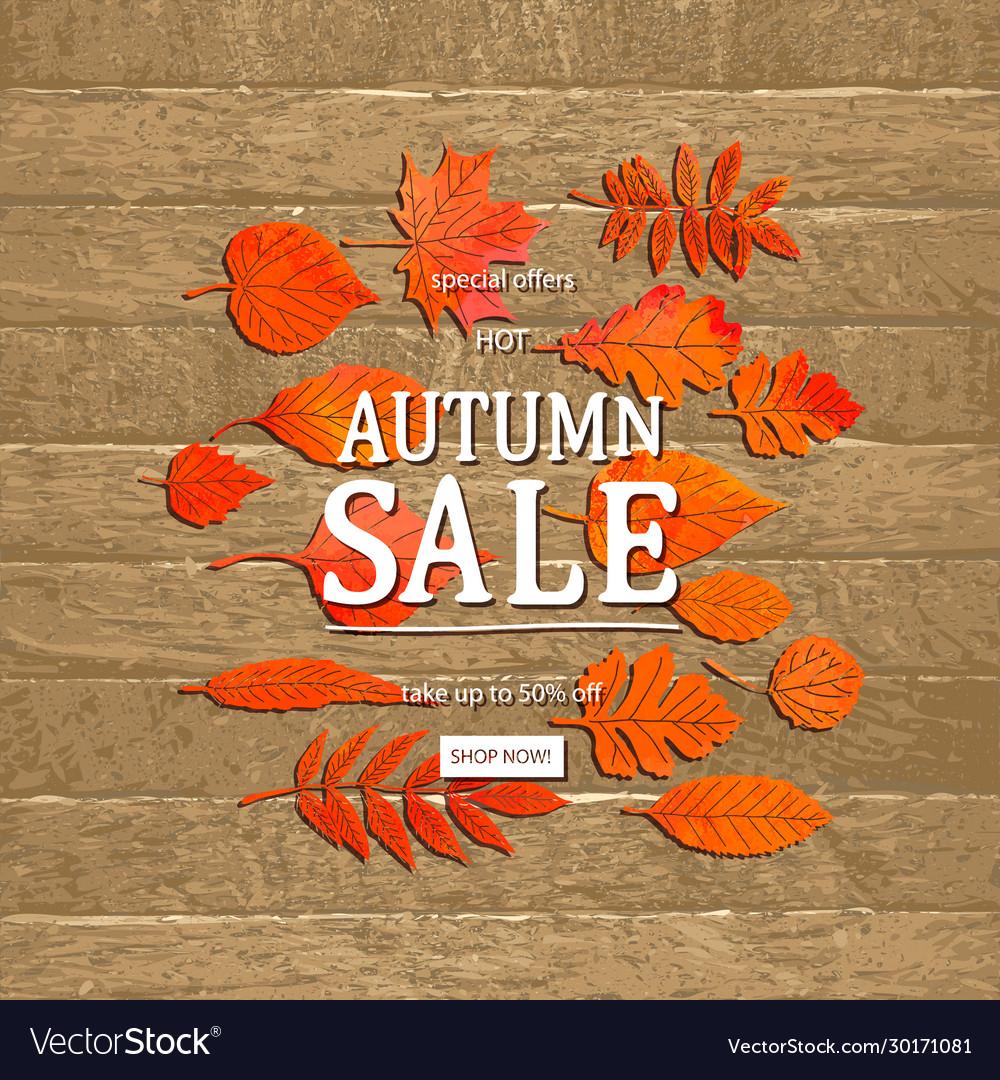 Autumn sale banner concept