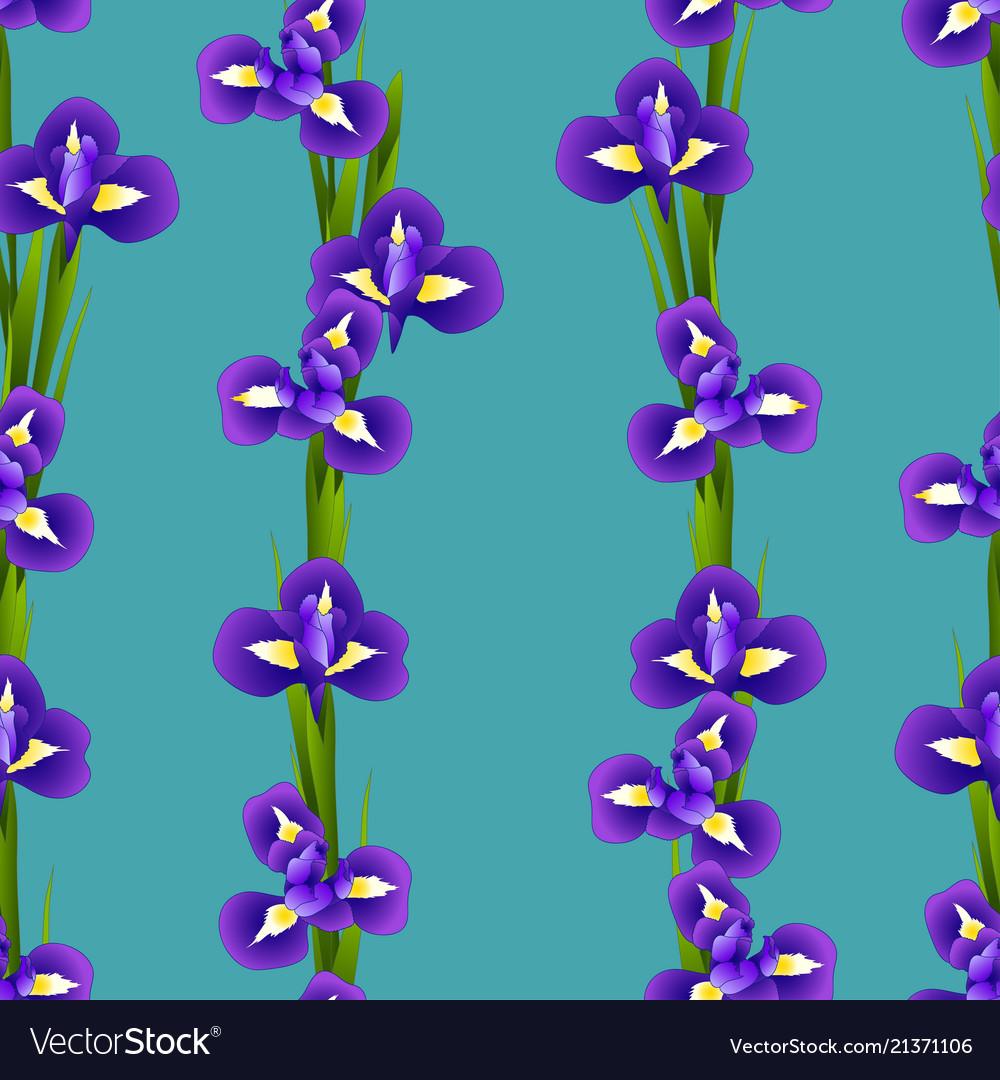 Iris Flower Seamless On Indigo Blue Background Vector Image
