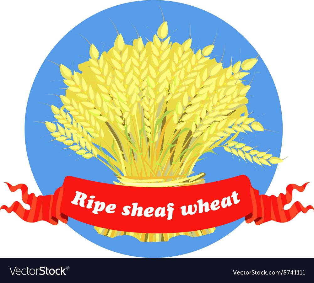 Sheaf Of Wheat, Vector Flat Isolated Illustration Stock Vector -  Illustration of food, corn: 144085961