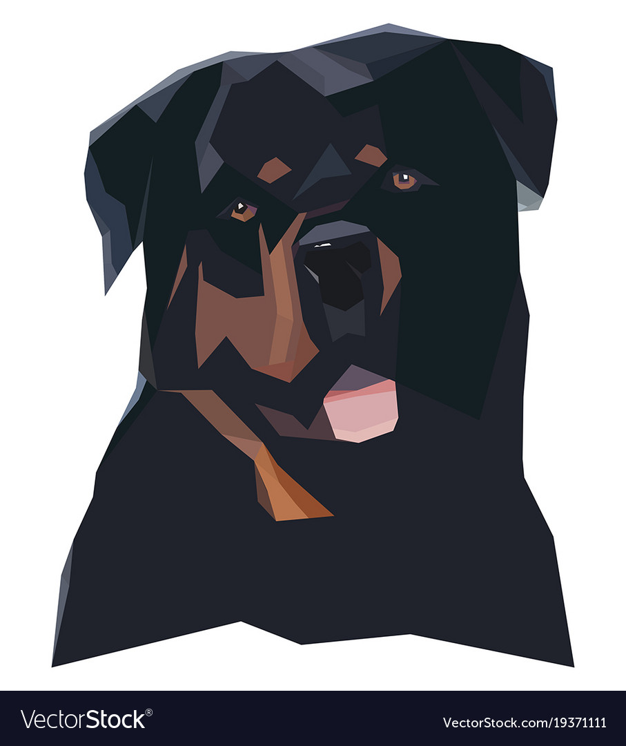 Rottweilers portrait in a geometric style