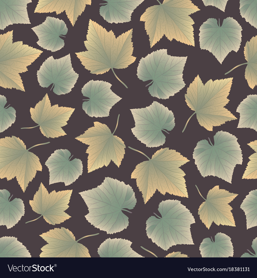 Leaves collect-03 vector image