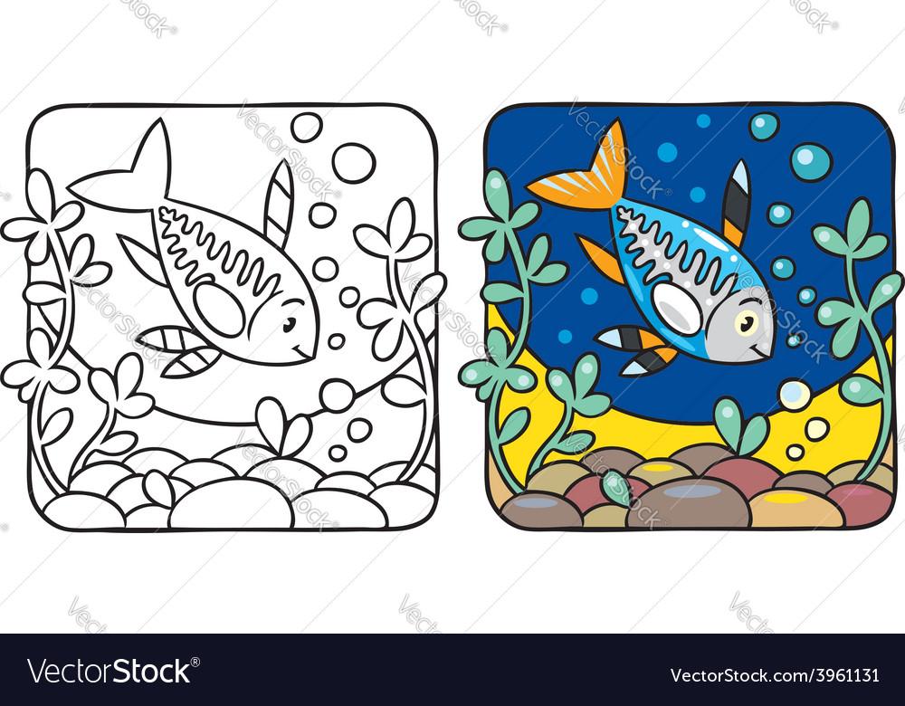 X-ray fish coloring book vector image