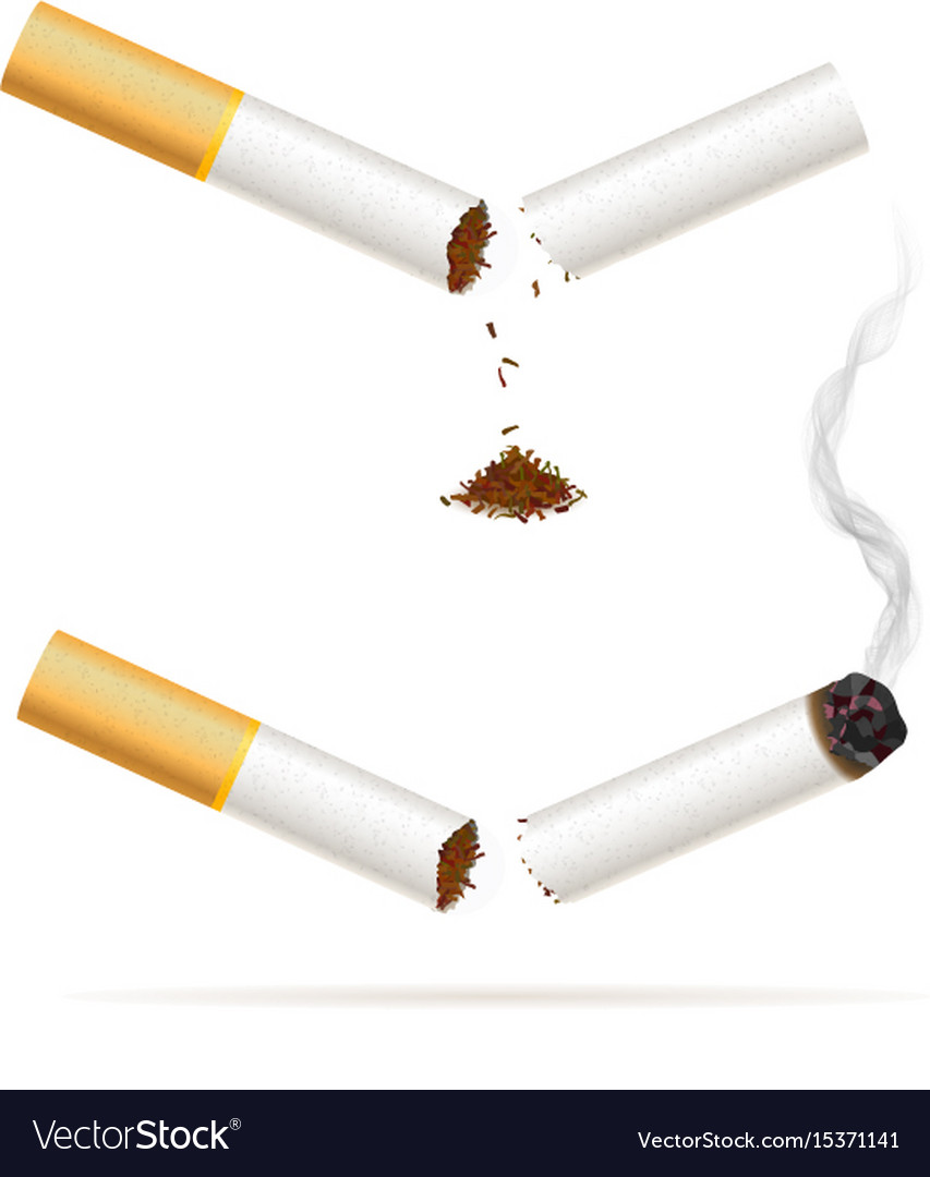 Broken realistic cigarette quit smoking