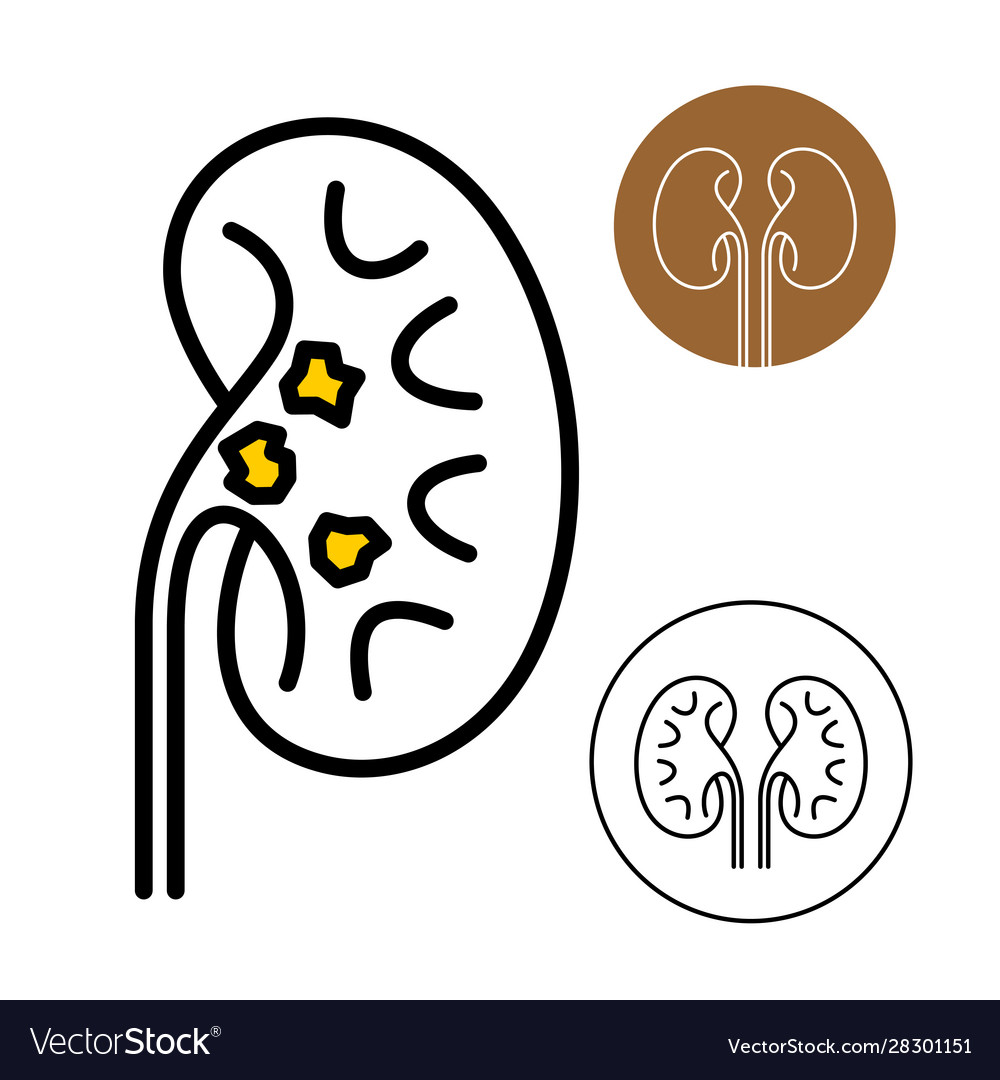 Kidney beans icon with stones disease inside