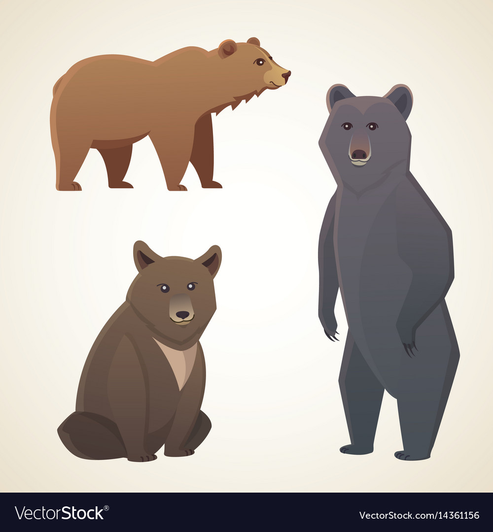 With different bears isolated on